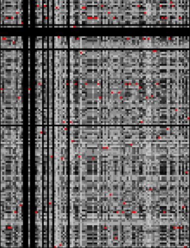 matrix-786x1024